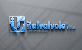 Italvalvole - Türkiye ve Türki Cumhuriyetler Distribütörü
